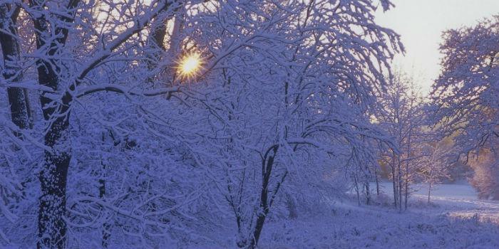 Саратовцам обещают теплую погоду смокрым снегом