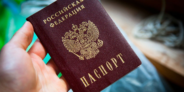 Загран паспорт скачать
